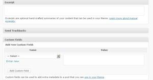 No WordPress Custom Fields